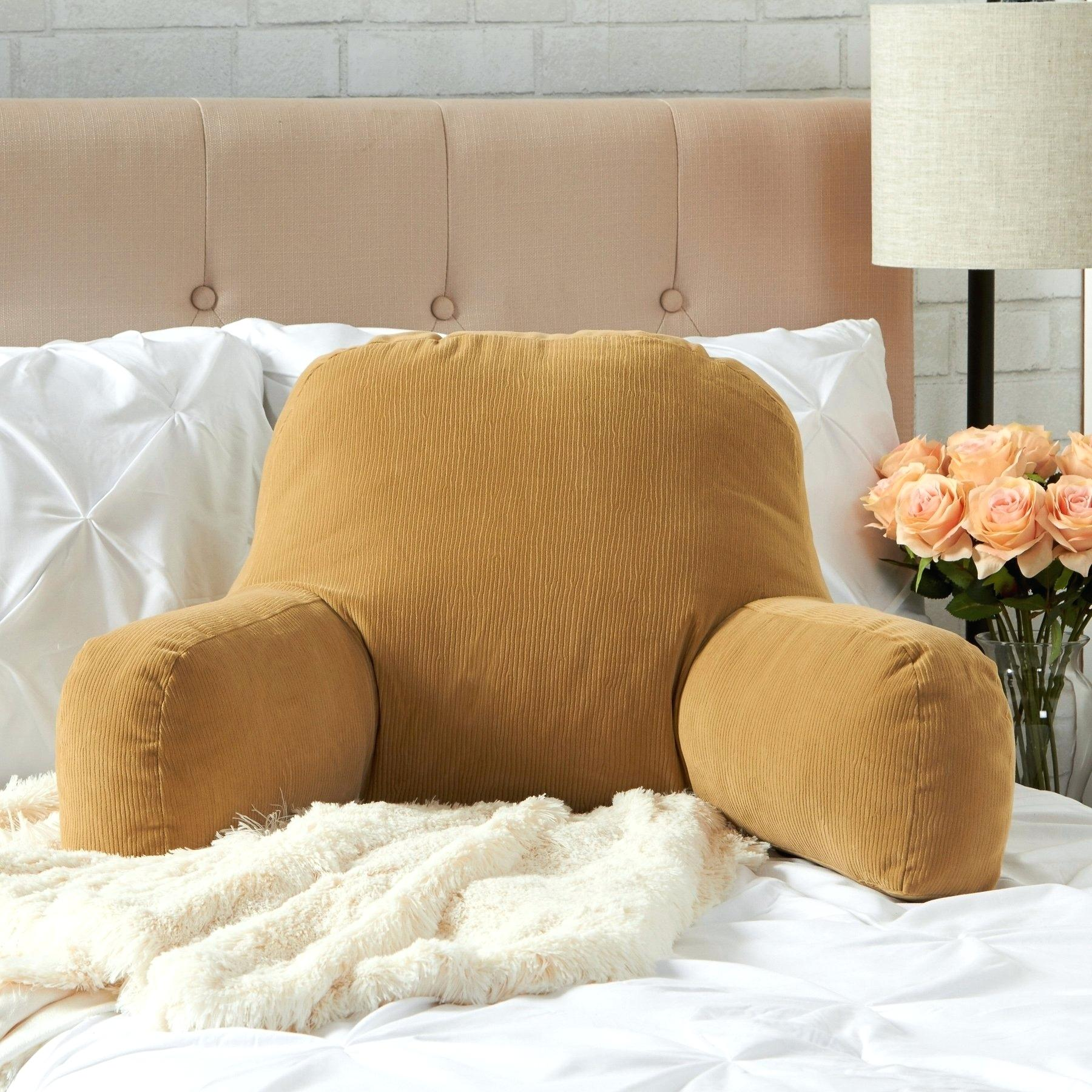 Picture of: Backrest Pillows With Arms Jobs In Wildlife